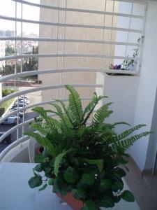 appartement location saisonniere ma